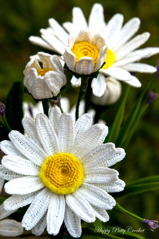Shasta Daisy Pattern by Happy Patty Crochet - Part of a Spring Floral round-up by The Crafty Therapist